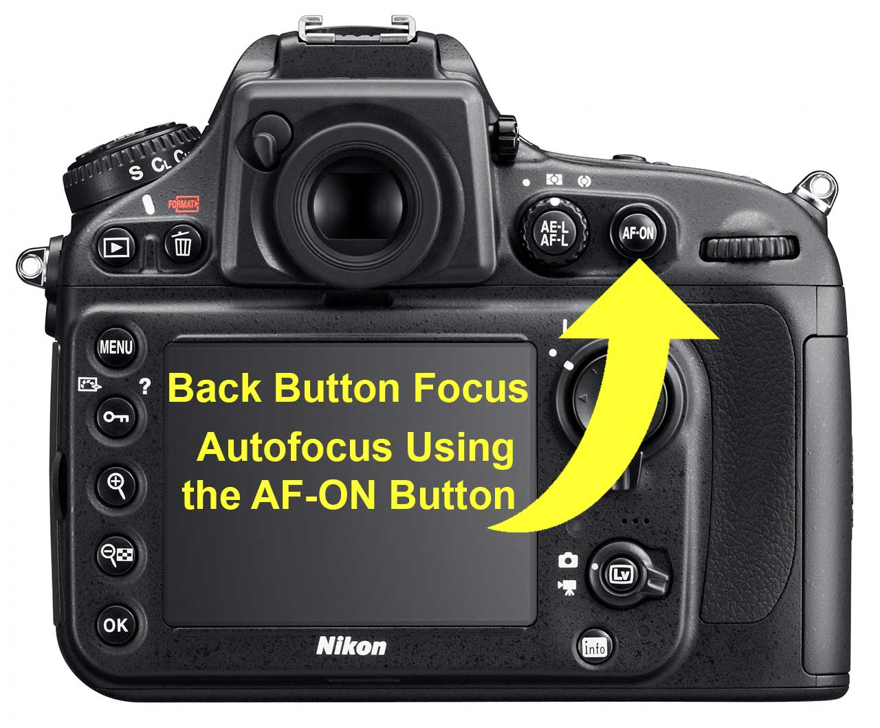 Back Button Focus Using Nikon AF-ON Button