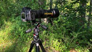 Nikon 200mm-500mm Lens